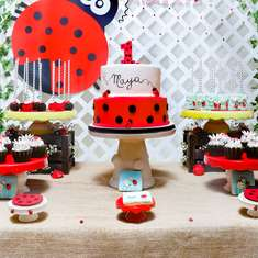 Maya's 1st Birthday Ladybug Party - Lady Bug Theme