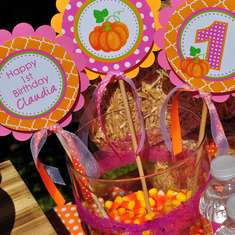 Pumpkin Birthday Party - Pumpkin Patch 1st Birthday