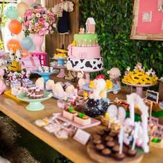Maria Eduarda's Farm birthday party - Farm