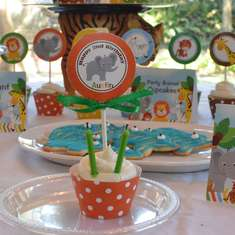 Wild Animal Birthday Party - Zoo/ Wild Animals/ Safari/ Jungle