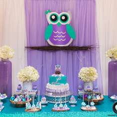 Whoooos Whoooo Baby Shower  - Owl Theme