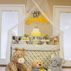 Laurin's Baby Shower for Little Miss Riley! - You Are My Sunshine