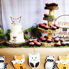 Theo's First Birthday Party - Woodland Animals, Wild One