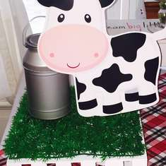 Farm birthday party - Farm