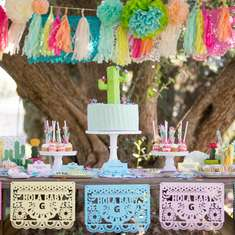 Cinco De Mayo Inspired Baby Shower - Fiesta