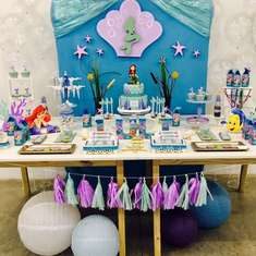 Little Mermaid, Ariel Princess Party  - Little Mermaid