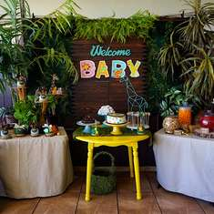 "Safari Theme ""Fisher Price"" Baby Shower - Safari Theme"