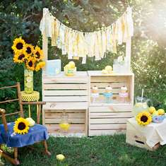 Summer Lemonade Inspired shoot  - Lemonade / Lemons
