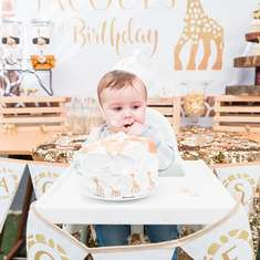 Sophie the Giraffe 1st Birthday Party - Sophie the Giraffe