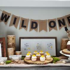 Layton's a Wild One - First Birthday Party - Where the Wild Things Are