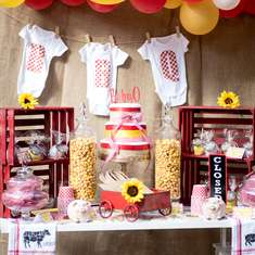 Bbq Party Ideas For A Baby Shower Catch My Party - Backyard bbq party ideas