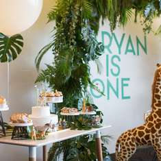 Aaryan 1st Birthday Bash  - Minimalist Safari Theme