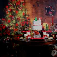 Christmas Photoshoot  - Christmas / Natal