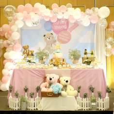 Beary Fun 1st birthday party - Beary Fun Theme