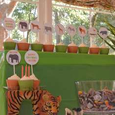 Let's Party Like Animals! - safari/ zoo animals/ animal parade