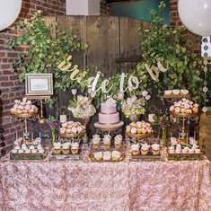 Red Bank Wedding Walk Bridal Shower Dessert Table! - Rustic Elegance Blush Dessert Table