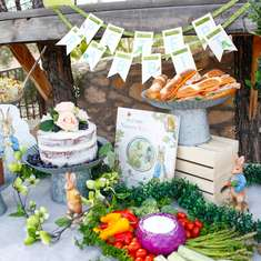 Peter Rabbit Party - Peter Rabbit