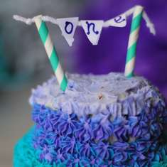 Purple and Turquoise Birthday Party  - Purple and Turquoise