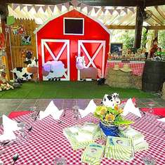 Fun at the Barn Party - Farm Party
