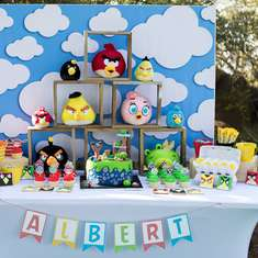 Albert's turns 5 with Angry Birds - Angry Birds