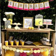 Kids Lemonade Stand - None
