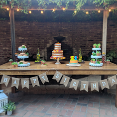 3 generations Rustic themed birthday party - Rustic ( Cactus + Succulent ) theme party