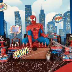 Spiderman Party - None