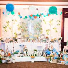 Peter Rabbit birthday party - None