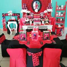 Ladybug birthday party - Lady bug