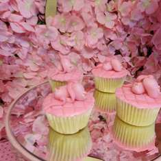 Ballerina Party Ideas For A Baby Shower Catch My Party