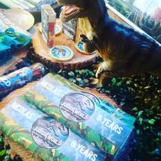 Jurassic world birthday party - None