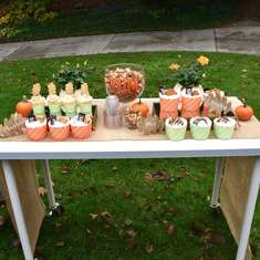 S'mores Soiree - Autumn