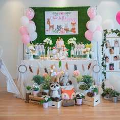 Rustic Woodland birthday party - Rustic Woodland Theme