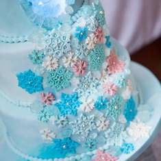Frozen birthday party - Frozen Winter wonderland