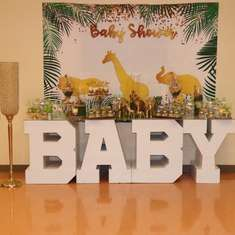 Safari animals baby shower  - Safari