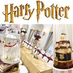 Elegance Harry Potter celebration  - Harry Potter