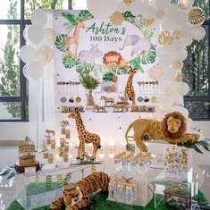 Modern Safari birthday party - Modern Safari Theme
