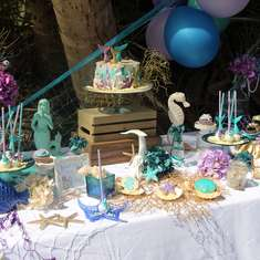 Tropical Mermaid party in a French West Indies Island - Mermaid