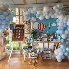 Gaspar 's Teddy Bear Baby Shower - Animals
