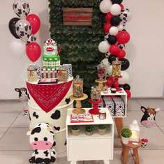 Hilario's Farm Animal birthday party  - Animals