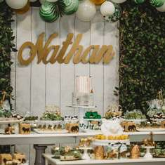 Nathan's Golden Safari First Birthday Party! - Golden Safari