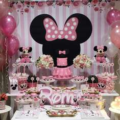 Minnie Mouse Birthday Party  - Mickey Mouse / Minnie Mouse