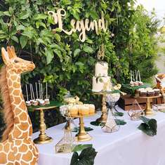 LEGEND-ARY Baby Shower - Safari or Jungle