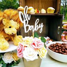 Pink Jungle Baby Shower - Animals