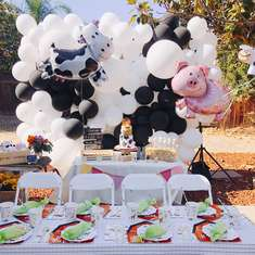 Leo's Farm Birthday Party by Momo Party - Modern Farm