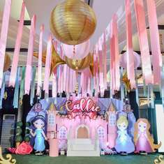 Callie's Disneyland/ Disney Princess Party - Disney Princess