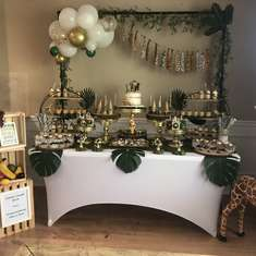 Zaiden's Jungle Book  - Jungle Baby Shower