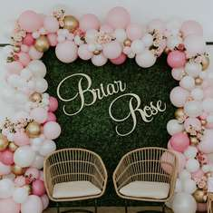 Briar Rose Baby Shower - Rose Garden
