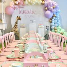 Pastel Themed Safari 1st Birthday  - Safari