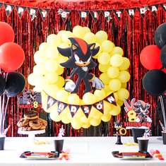 Shadow The Hedgehog Birthday Party - Shadow The Hedgehog